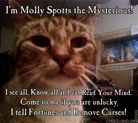 Photo (of Molly Spotts) and caption by Maryh Cookie