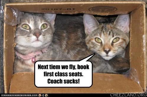 Photo source unknown (ICHC) Caption by Cattails